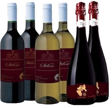 ふるさと納税 ワイン4 min