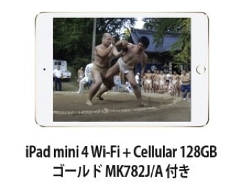 iPad mini 4 Wi-Fi + Cellular 128GB - ゴールド MK782J/A 付き AI-18B